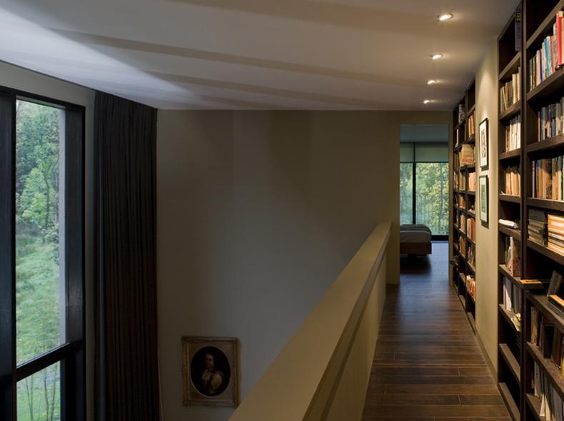 wilderness - library interior