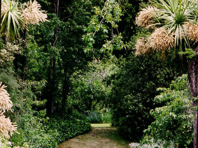 mt peel garden -  view i